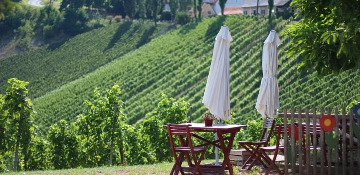 Vinhos da Áustria
