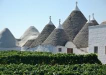 Vinhos de Puglia – Itália
