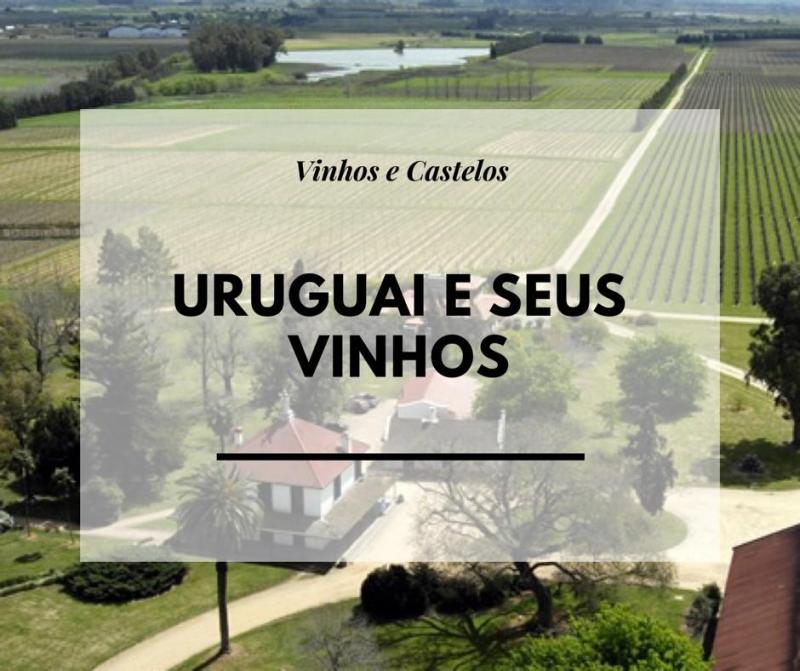 Vinhos do Uruguai