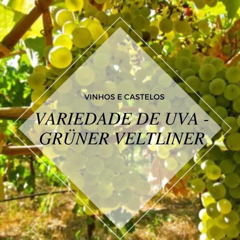 Variedade de uva: Grüner Veltliner