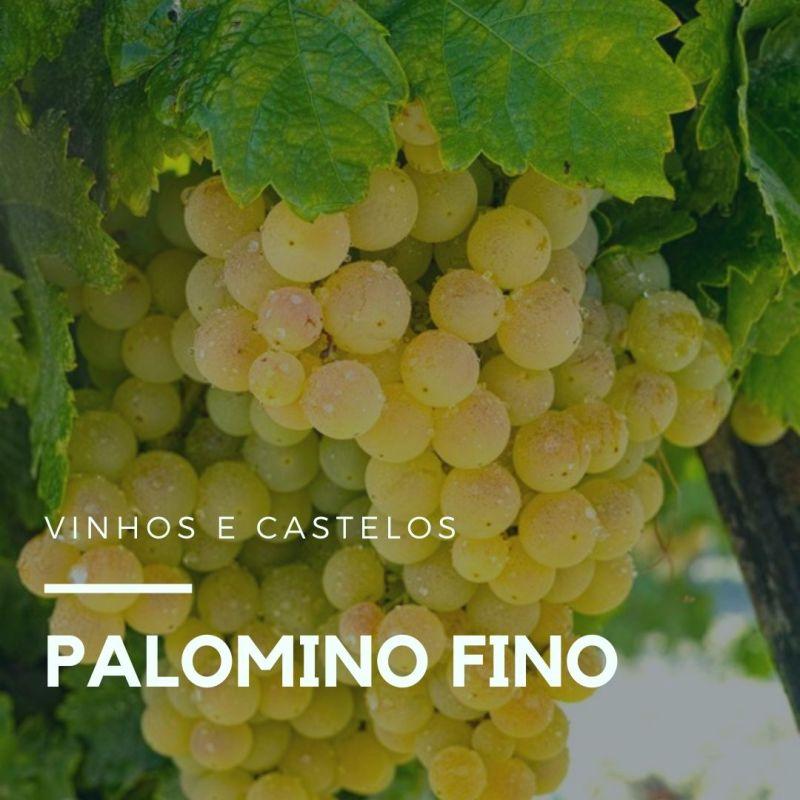Variedade de uva: Palomino Fino