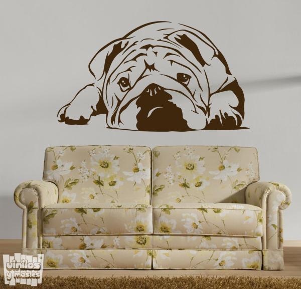 Vinilo decorativo Bulldog ingles 4