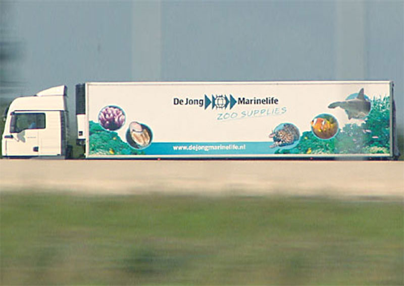 De Jong Marinelife Corporate Film