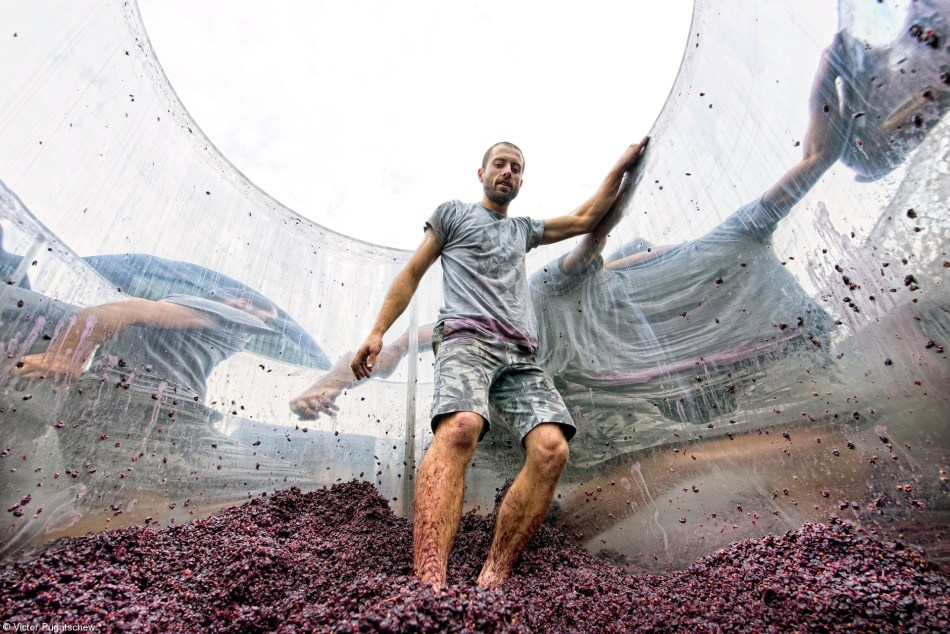 1st PlaceErrazuriz Wine Photographer of the Year - People© Victor Pugatschew,Australia Pressing the pinot noir Pushing the pinot out of the tank at Hoddles Creek vineyard