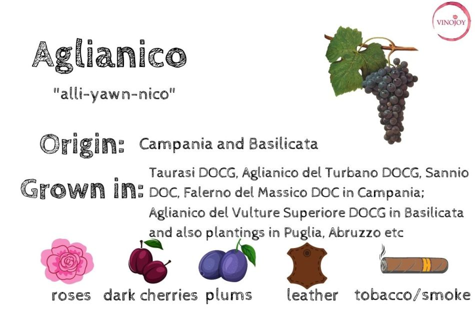 """Aglianico is dubbed as """"Nebbiolo of the South"""" (pic: Vino Joy News)"""