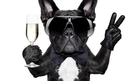 известные вина известных людей вино знаменитости