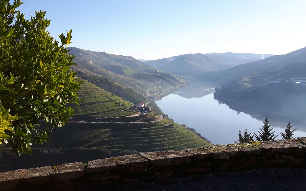 Лучшие винодельни виноградники мира Португалия Дору Квинта до Красто (Quinta do Crasto)