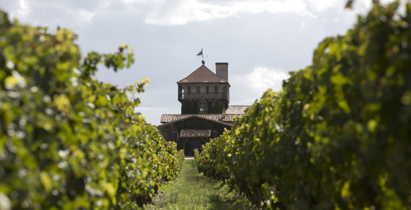 Лучшие винодельни виноградники мира Франция Бордо Шато Смит От Лафитт (Château Smith Haut Lafitte)