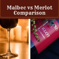 Malbec vs Merlot: Which Will You Love More?