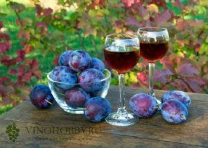 Casa-vinho 13