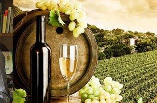 Pietro Rocchelli: strategie per vino italiano nel mercato globale