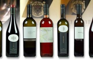 Vinoit.IT - Testata Giornalistica dedicata al Vino Italiano