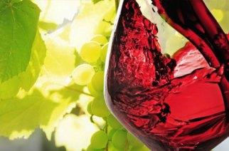 Vino e turismo a braccetto in Val di Noto graize alla nuova Wine Pass