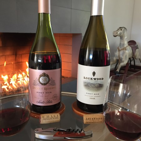 Two bottles and glasses of Pinot Noir from Costco. Both well under $10.