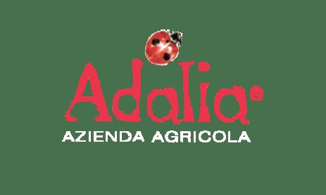 Vinopilis-MX-Adalia
