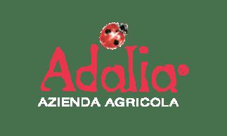 ADALIA - AZIENDA AGRICOLA IN MEZZANE