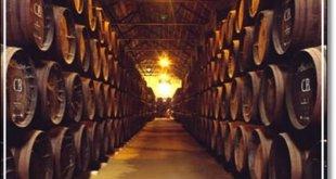 Semana de los vinos de Madrid en Málaga