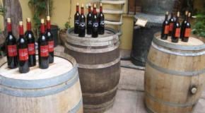 Un buen vino acompañado de mucha historia