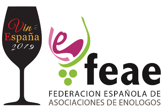 concurso vinespana 2019