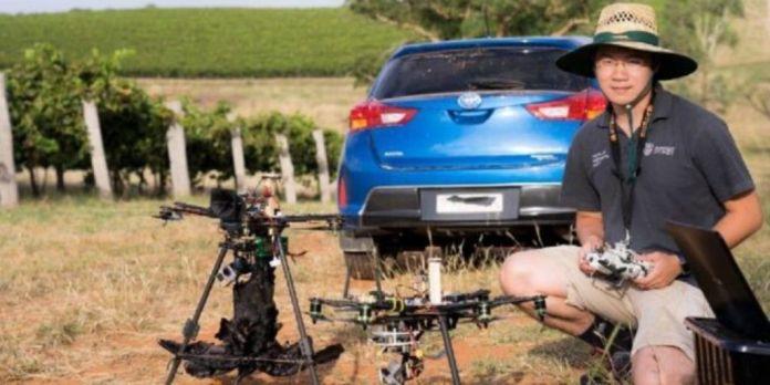drones en viñedos