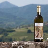 Il Consorzio Tutela del Gavi presenta la formula dell'eccellenza  (Wine + Food + Arts) x Tourism = La Buona Italia