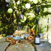 I vini d'Alsazia protagonisti nelle enoteche e nei ristoranti italiani