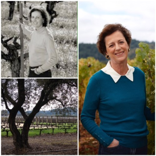 """Is To Kalon Vineyard a """"fountain of youth""""?"""