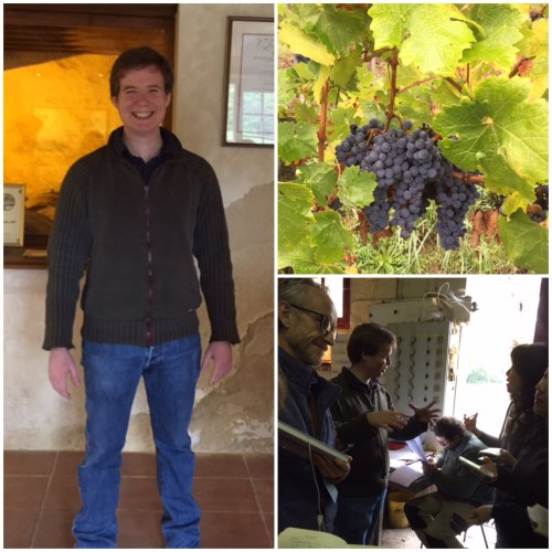 Cyril Saint-Exupery; Cabernet Franc nearly ready for harvest; busy preparations in the winery.