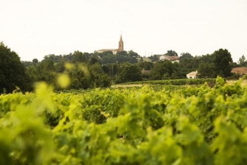 Château Plaisance Photo credit: www.aoc-vin-fronton.hautetfort.com