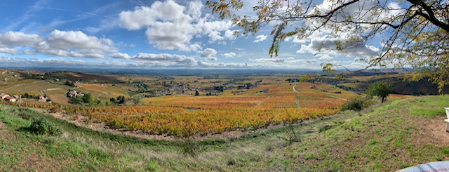 Panorama of Beaujolais wine region October 2019 to introduce Rhone Valley blog post