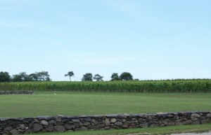 Sakonnet Vineyards, Rhode Island / Photo: Marguerite Barrett