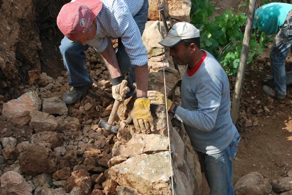 mûr de pierre traditionnel terrasses vignes