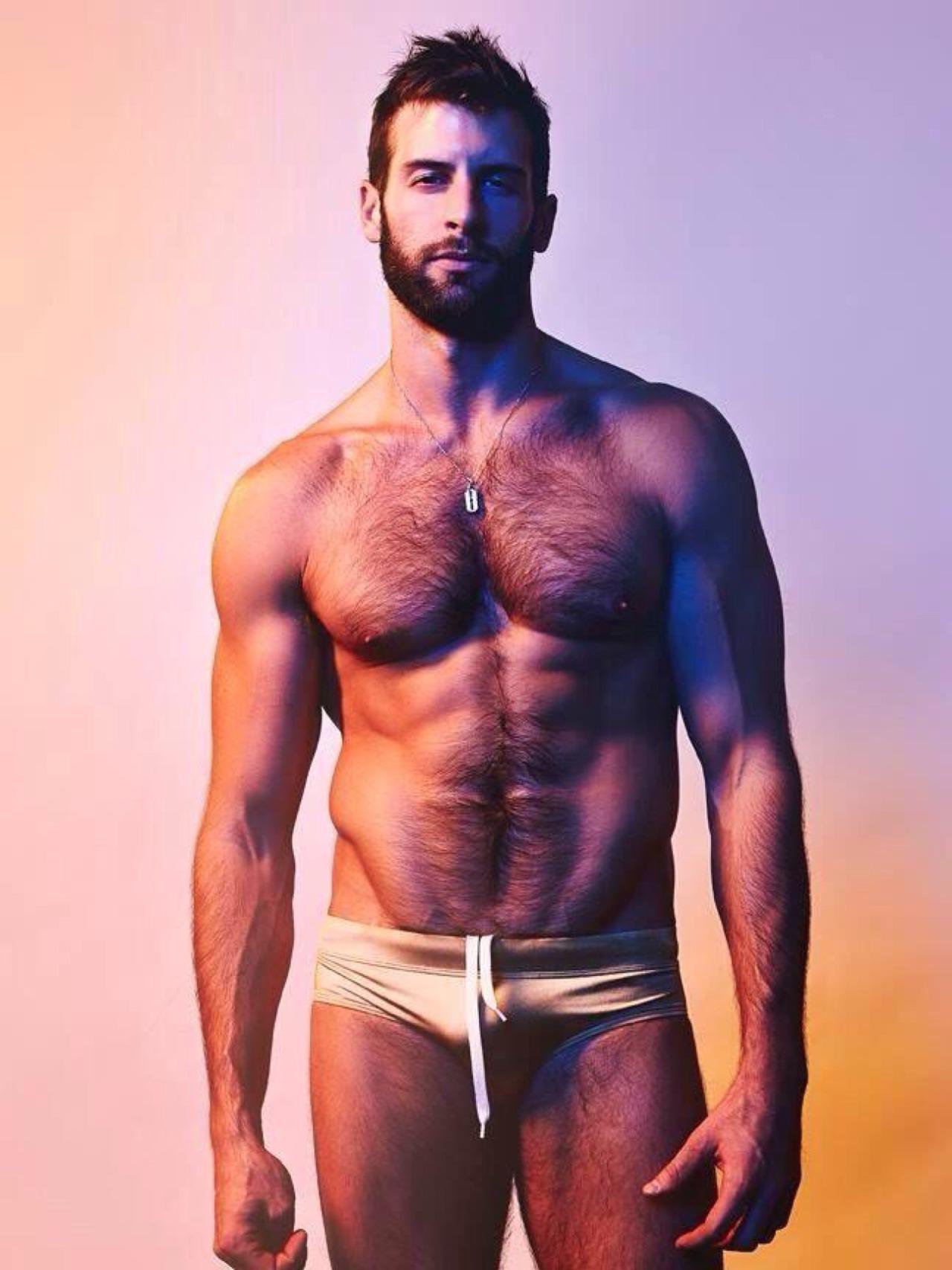David Picard gay hot daddy dude men