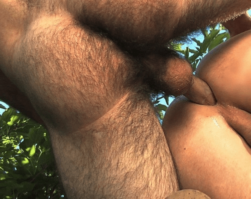 gay hot daddy dude men porn fuck str8