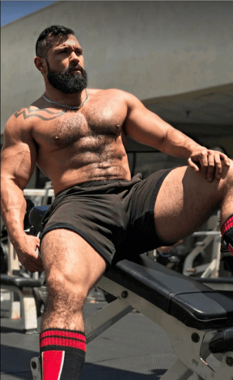 gay hot daddy dude men bear