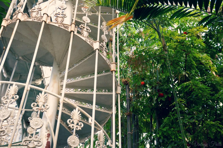Kew Gardens Palm House Staircase