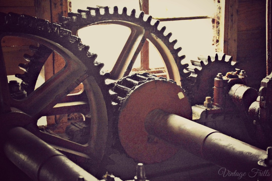 Painshill Mill Cogs