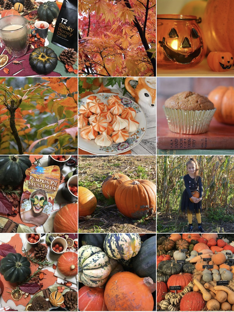Autumn Instagram theme