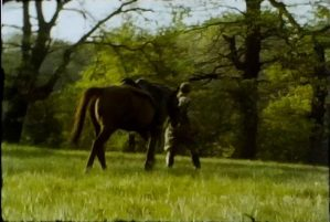 A still image from a vintage home movie of a group of people horse riding.