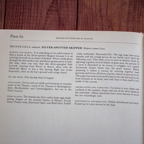 Ботаническая иллюстрация из книги 1968 года. Артикул: tcbbic_pl062
