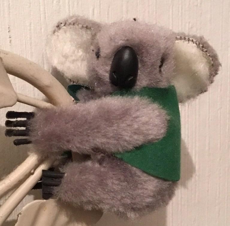 Peluche pince doigt koala