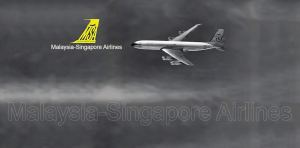 Malaysia-Singapore Airlines (MSA)