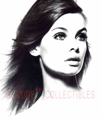 Jean Shrimpton by David Bailey Vintage Book Art Print BUY: https://www.etsy.com/listing/210315231/jean-shrimpton-1965-david-bailey-rich
