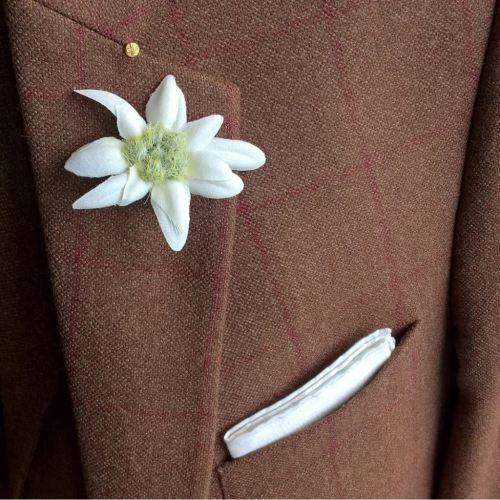 Nahaufnahme eines braunen Tweedjacketts mit rotem Überkaro, Edelweiß-Boutonniere, weißem Einstecktuch und Burschenschafternadel.