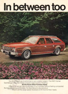 1976 American Motors Advertisement #2