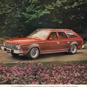 1976 American Motors Advertisement #2
