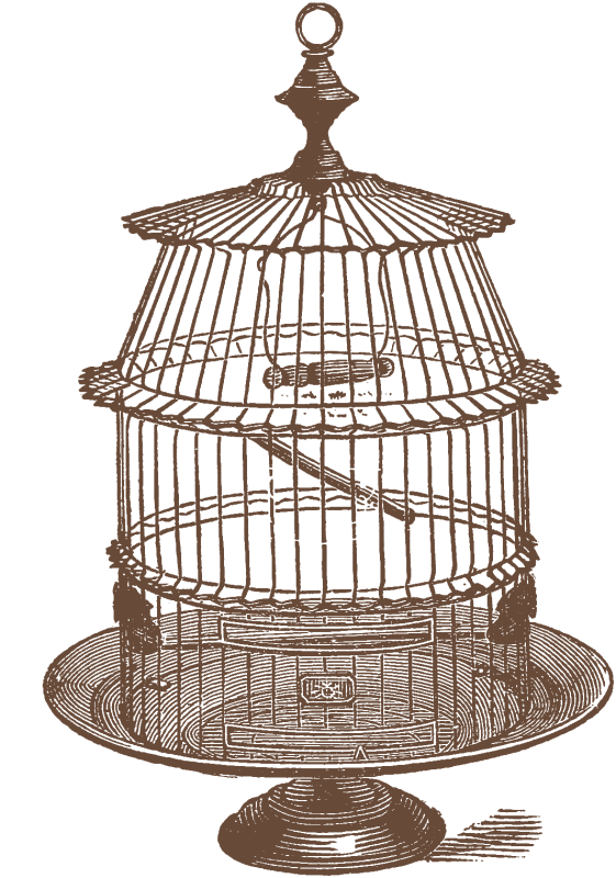 Another Set of Bird Cage Stock Images