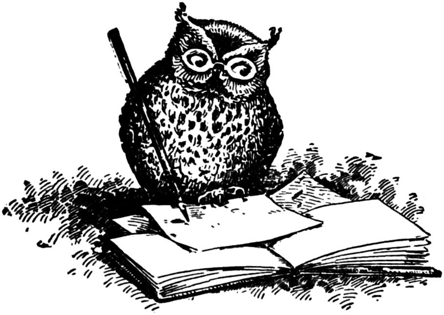 Vintage Clip Art - Adorable Wise Owl Illustration