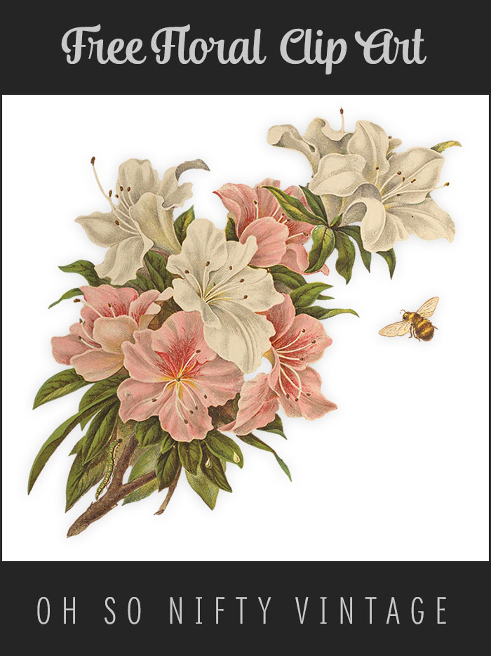 vgosn_floral_clip_art_prev