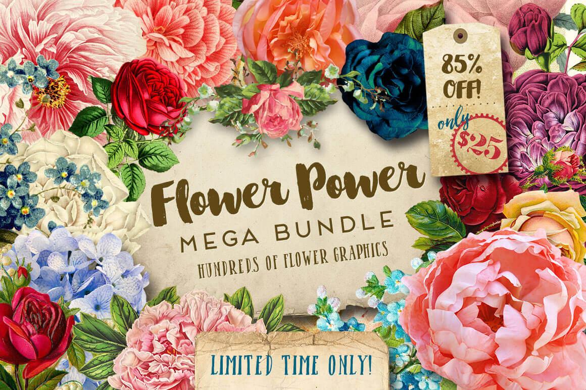 Gorgeous Flower Graphics   22 Different Floral Sets!